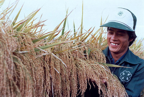 Kim Yeon-do, the farmer who produced the largest amount of rice in 1984 with 1,006 kg per 10 acres of land