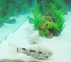 A robotic fish developed by Korean scientists