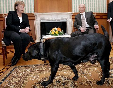 Putin brings in his dog koni during their meeting in 2006 epa