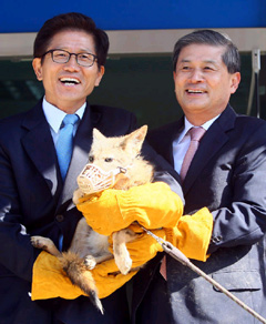 Cloning expert Hwang Woo-suk (right) and Gyeonggi Province Governor Kim Moon-soo pose with a cloned coyote at an animal rescue shelter in Pyeongtaek, Gyeonggi Province on Monday. /Newsis