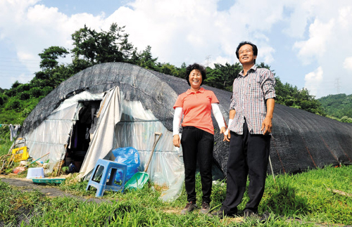 Gymnast Yang Hak-seons parents smile in front of their makeshift house after hearing the news that their son won a gold medal at the London Summer Olympics on Tuesday.