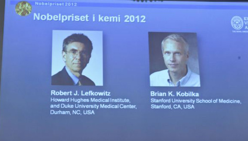 Images of researchers Robert Lefkowitz and Brian Kobilka are seen on a projector during a news conference by the Royal Swedish Academy of Sciences in Stockholm on Oct. 10, 2012. /Reuters