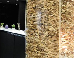 A tower made of patients bones at a plastic surgery clinic in Gangnam, Seoul