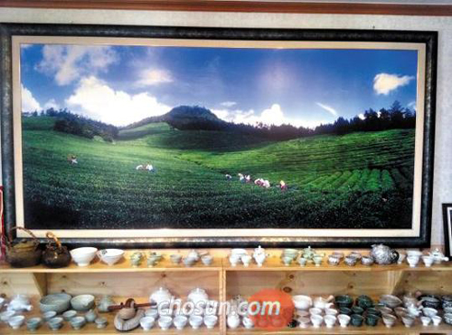 A framed photograph presumably taken by Yoo Byung-eon, who owns the firm operating the sunken ferry Sewol, hangs at a tea farm belonging to Yoo and his family in Boseong, South Jeolla Province.