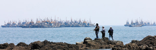 A group of Chinese fishing boats are engaged in illegal fishing near Yeonpyeong Island on Thursday.
