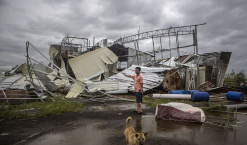 A dog walks past as a man stands in front of a factory building which was destroyed by Typhoon Rammasun, in Leizhou, Guangdong province, China on July 19, 2014. /Reuters